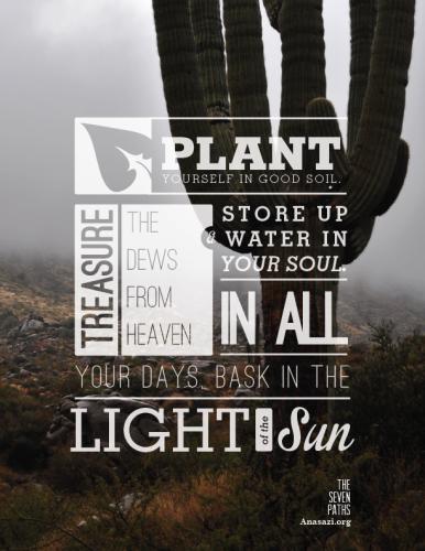 plant-7P-poster